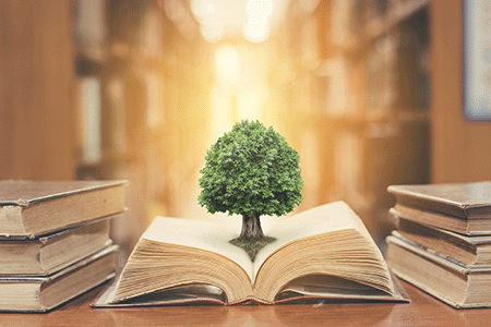 book with tree growing out of it
