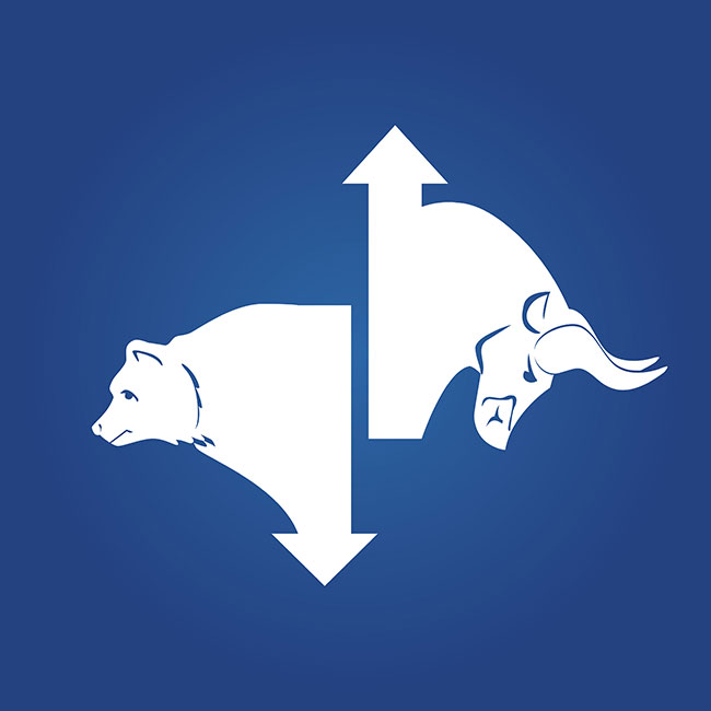 Bull and bear showing market direction